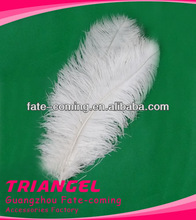 Ostrich Feathers Decorations For Wedding Decor