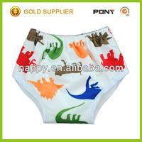 100% Bamboo Minky Potty Training Pants