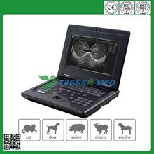 Hot sale cheap YSVET0210 portable veterinary ultrasound equipment