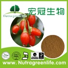 GMP certified China manufacturer Goji Berry Wolfberry fruit Extract Powder