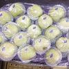 2014 Golden delicious apple hot sale