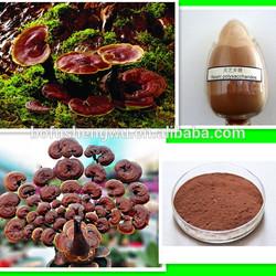reishi mushroom extract triterpenes/reishi mushroom powder extract/top quality reishi mushroom extract