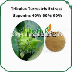 tea seed saponin 100% natural pure tribulus terrestris extract furostanolic saponins