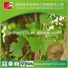 Manufacturer Supply Ginkgo Biloba Extract Flavonoids