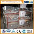 çini fabrikası yüksek kaliteli kullanılan tavşan kafesleri Satılık/zincir bağlantı eskrim kuş kafes/büyük hayvan kafesleri satılık