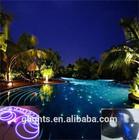led fiber optic light for pool
