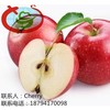 Gala Apple Companies Imported Fruit