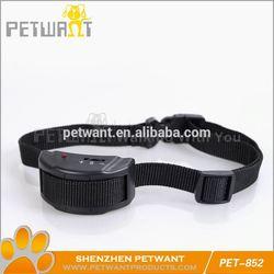 dog training with shock collar