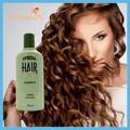 el jengibre 2014 queratina champú y el crecimiento de cuidado del cabello producto