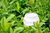 Aloe Vera Organic Facial Mask / Tissue Mask or Mask Gel