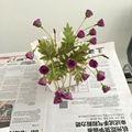 Atacado mini-artificial seda rosa bouquet