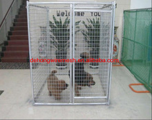 Heavy Duty Steel Dog Kennels/Dog Cage/Dog House (China Factory&ISO9001)
