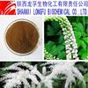 Manufacturer sales black cohosh powder extract