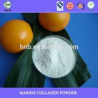 best nutrition supplement bulk collagen for skin care collagen powder