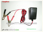 Hot sale 12v 1a li-ion battery/ lead acid battery charger