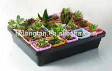 square plastic tray large plastic flower pot trays rectangular