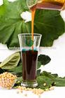 Emulsion grade soya lecithin emulgator