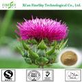 100% natural 80% silymarin extrato de sementes de cardo