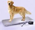 電子動物のスケールを持つ大規模なプラットフォームas-300( 300kg/0.1キロ)
