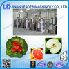 2014 hot sales hot fruit and vegetable chips processing line