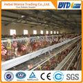 Tavuk yetiştirme sistemleri/tavuk tel çit panelleri çiftlik isimleri