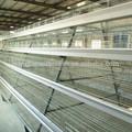 La capa de huevo de gallina jaula/granja de aves de corral casa diseño hecho en china