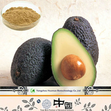 Hot Selling Cheap Pure Natural Organic Avocado Extract Oil Avocado Price