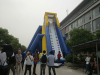 giant inflatable water slide/ hippo for sale good quality