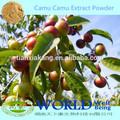 100% الكامو الكامو الفاكهة العضوية الطبيعية مسحوق فيتامين ج/ الكامو الكامو استخراج مسحوق/ الكامو الكامو مسحوق العضوية