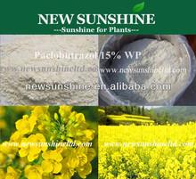 Paclobutrazol 15% WP, 25% SC, Plant growth regulator