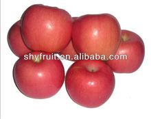 Chinese organic fresh fuji apple (hot)!