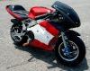 49CC pocket bike LWPB-608W motorbikes