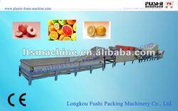fruit waxing machiney