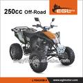 egl cee 250cc dune buggy