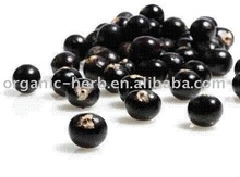 Brazil origin Acai Berry Extract 5% Vitamin C