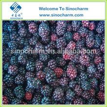 Sell China Frozen IQF Blackberry, Frozen blackberry