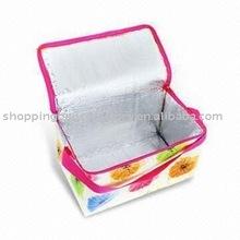2013 Hot Sale Picnic Cooler Bag(glt-c0051)