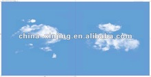 Blue sky white clouds pattern- aluminum clip in ceiling tile