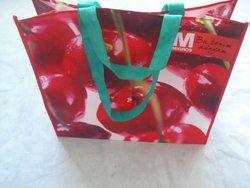 2013 new fashion shopping bag