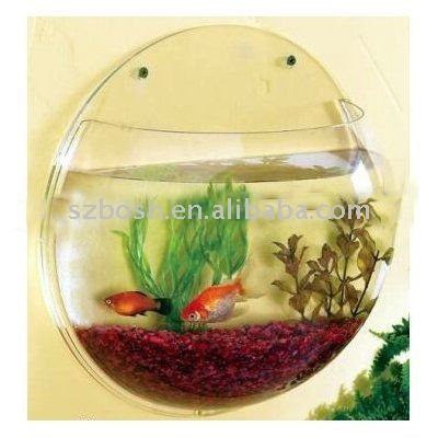 Round Fish Tank For Sale Round Acrylic Fish Tank