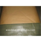 pe coated kraft paper