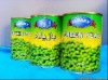 Cheap wholesale CANNED GREEN BEANS