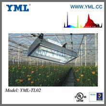 Hydroponic Grow Equipment Induction Grow Light