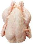 Grade ''A'' Frozen Whole Chicken Griller