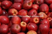 Gala Apple , Red Apples , Fresh Apple Price