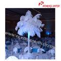 Decoración de la boda plumas de avestruz