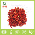 secado de pimiento morrón rojo 9x9 desde la base de la planta