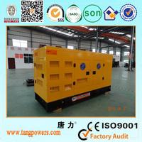 100KW Canopy Diesel Generator Set