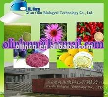 Black tea extract powder manufactures