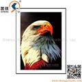 3D lenticular série águia imagem